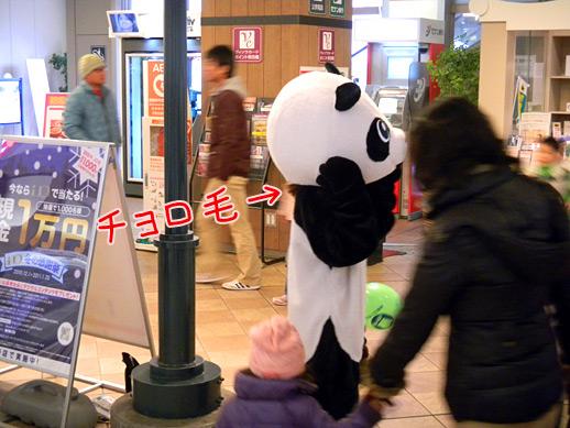 0117-panda-1.jpg